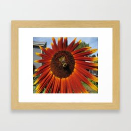 The Humble Bumble Framed Art Print