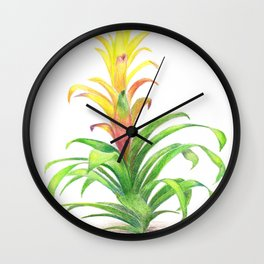Bromeliad - Tropical plant Wall Clock