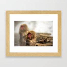 Snow Monkeys on Hot Spring Framed Art Print