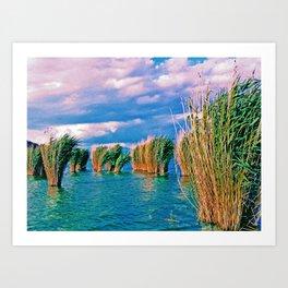Through the reeds Art Print
