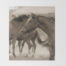 Horses in a stud Throw Blanket