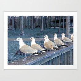 """""""Ducks"""" in a row :) Art Print"""