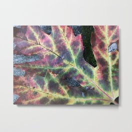 Rainbow Leaf Metal Print