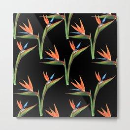 Bird of paradise flowers patten Metal Print