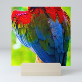 Spectacular Feathers On Scarlet Macaw Parrot's Back Mini Art Print