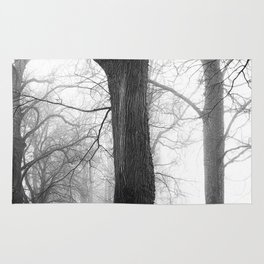 Fogy Forest Rug