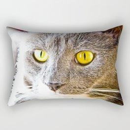 Yellow Eyed Cat Rectangular Pillow