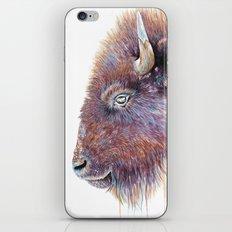 Watercolor Buffalo iPhone & iPod Skin