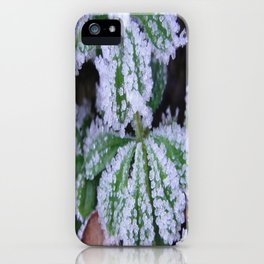 White frost on a beautiful leaf iPhone Case