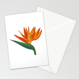 Bird of Paradise illustration Stationery Cards
