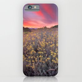 Magical clouds of light at sunset iPhone Case