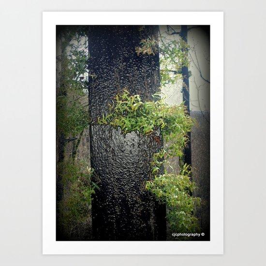 Regeneration   Art Print