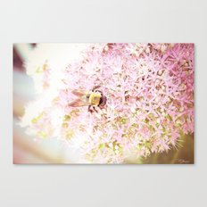 Nature of a Bee Canvas Print