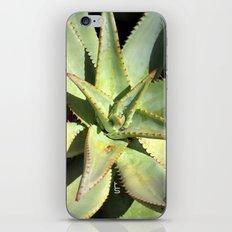 Agave I iPhone & iPod Skin