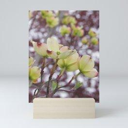 yellow dogwood flowers on black maple bokeh Mini Art Print