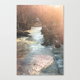 Belle Isle-Richmond Canvas Print