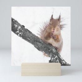 Little squirrel - smack! Mini Art Print