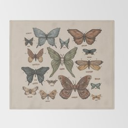 Butterflies and Moth Specimens Throw Blanket