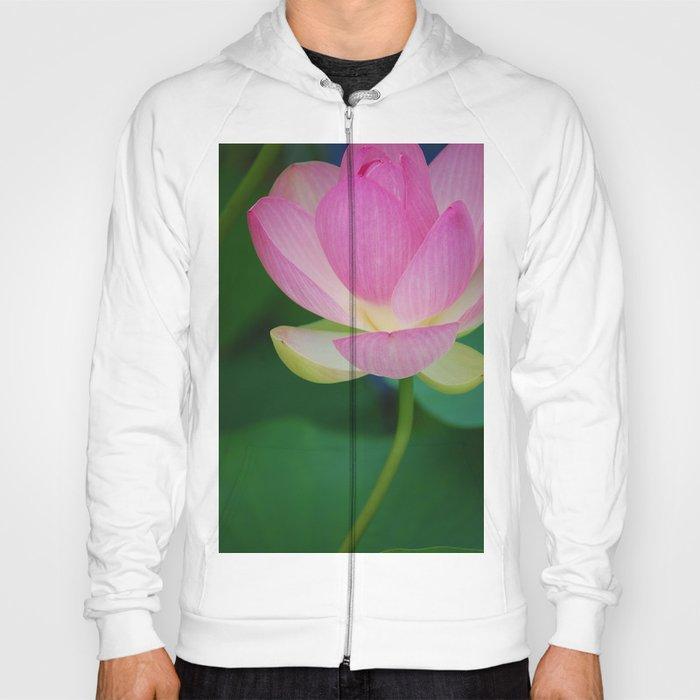 Lotus Blossom Flower 30 Hoody