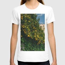 Amalfi Coast Lemons II T-shirt