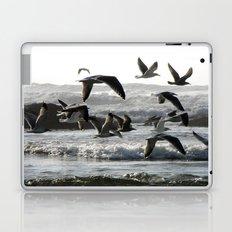 Take Flight Laptop & iPad Skin