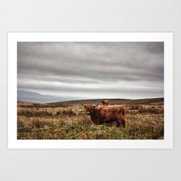 Highlander Art Print
