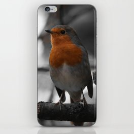 Robin iPhone Skin