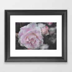 adorned Framed Art Print