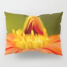 Mexican Sunflower Unfolding Pillow Sham