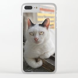 Hypnocat Clear iPhone Case