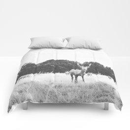 HELLO DEER IV Comforters