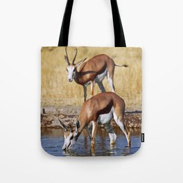 Springboks in Botswana, wildlife Tote Bag