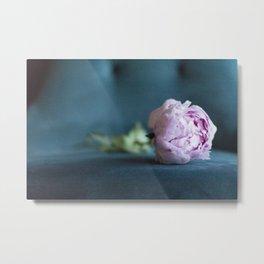 Single Peony in Pink, Magenta, and Fuchsia Metal Print
