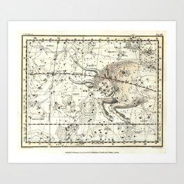 Taurus Zodiac, Celestial Atlas Plate 14, Alexander Jamieson Art Print