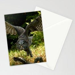 Flight of the Goddess Stationery Cards