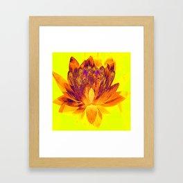 Early morning Lotus.... Framed Art Print