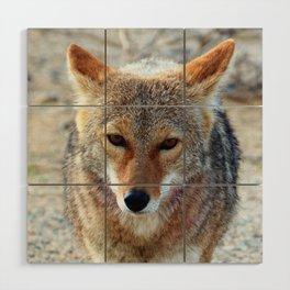 Coyote Wood Wall Art