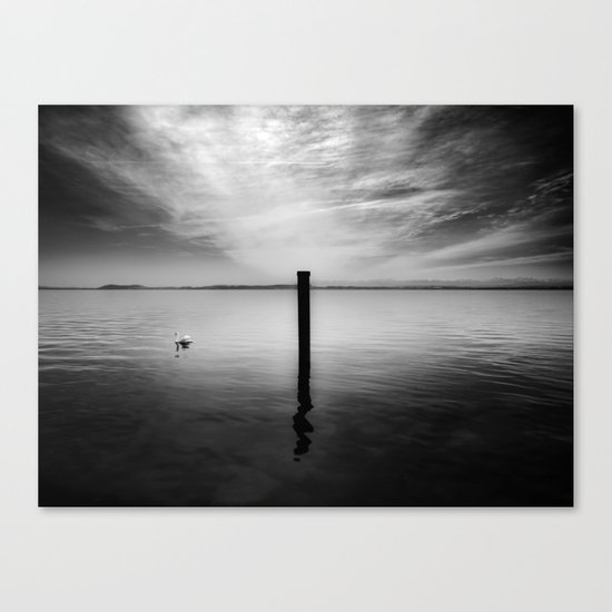 Lake and Swan. Landscape Photography. Canvas Print
