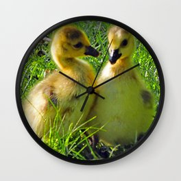 Cute Baby Canada Geese Stylized Photo Illustration Wall Clock