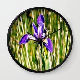 Wild iris on Seal Island, Nova Scotia Wall Clock