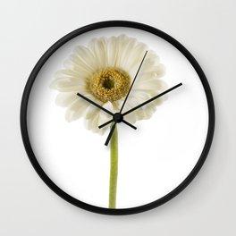 Lone Gerbera Wall Clock