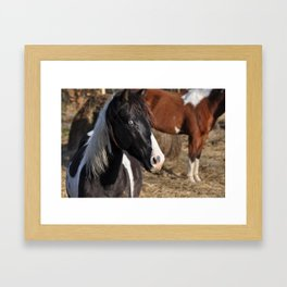 here's looking at you Framed Art Print