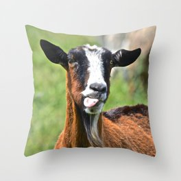 commentary Throw Pillow