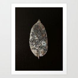 old leaf Art Print