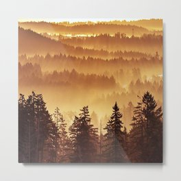 Golden Trees Metal Print