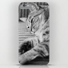 Cat Slim Case iPhone 6s Plus