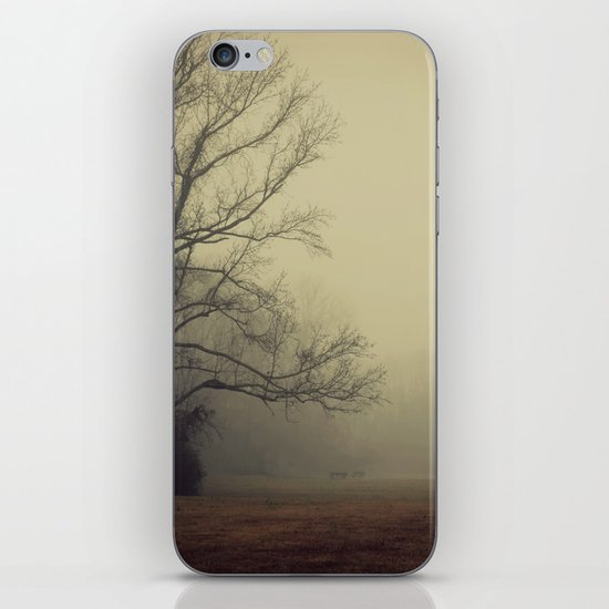 A Gathering of Fog iPhone & iPod Skin