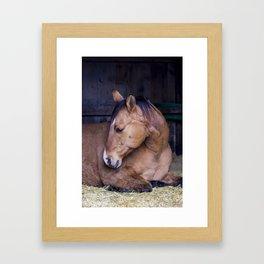 Cowboy Swan Position Framed Art Print