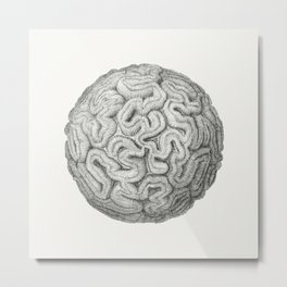 Round Coral Metal Print