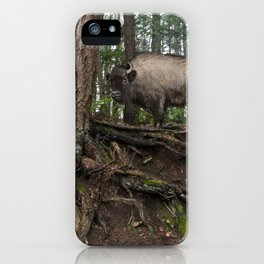 Rustic Buffalo in the Woods iPhone Case